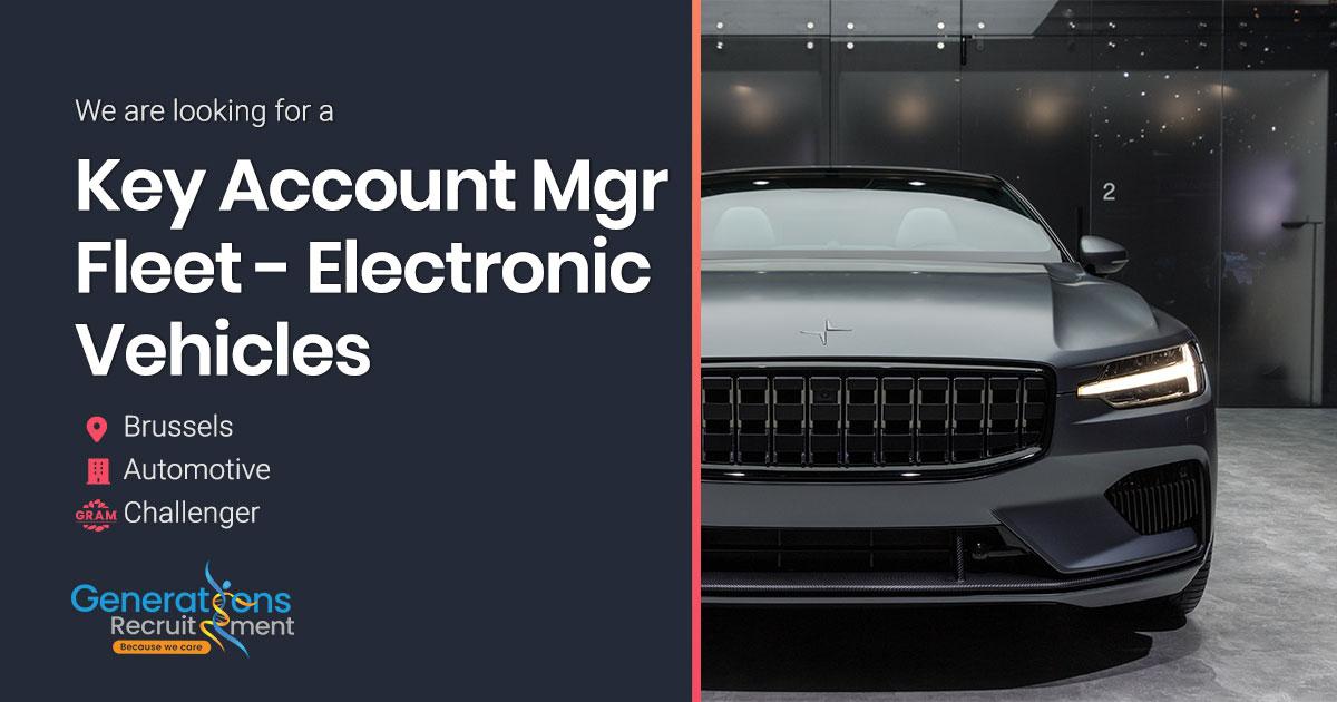 Key Account Manager Fleet - Electronic Vehicles I Automotive